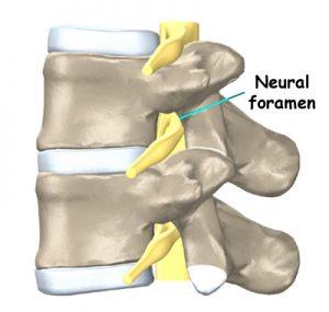 Colgan Osteopathy