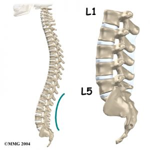 lumbar_low_back_pain_Kettering Osteopath